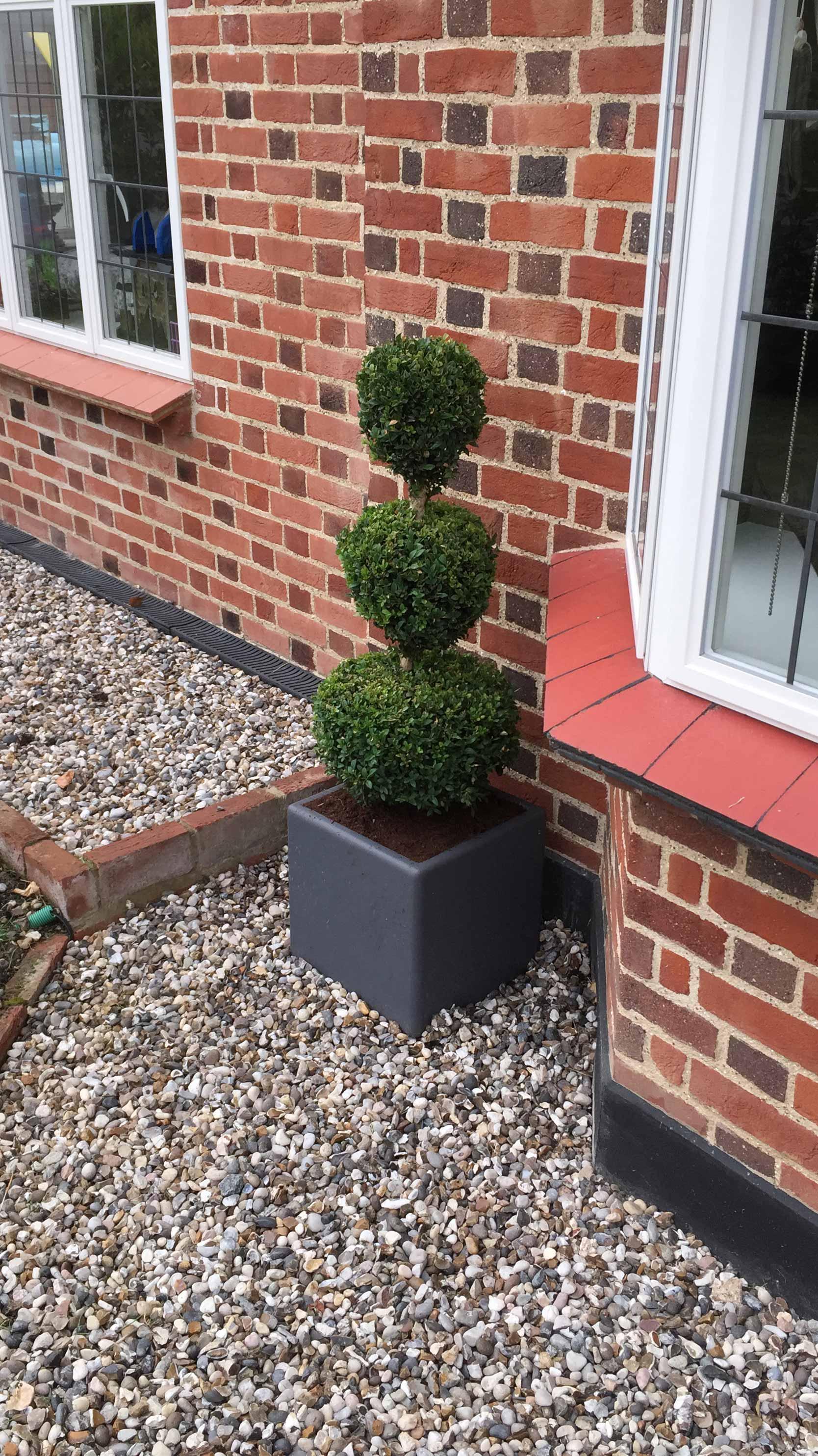 Front Garden in Buckhurst Hill