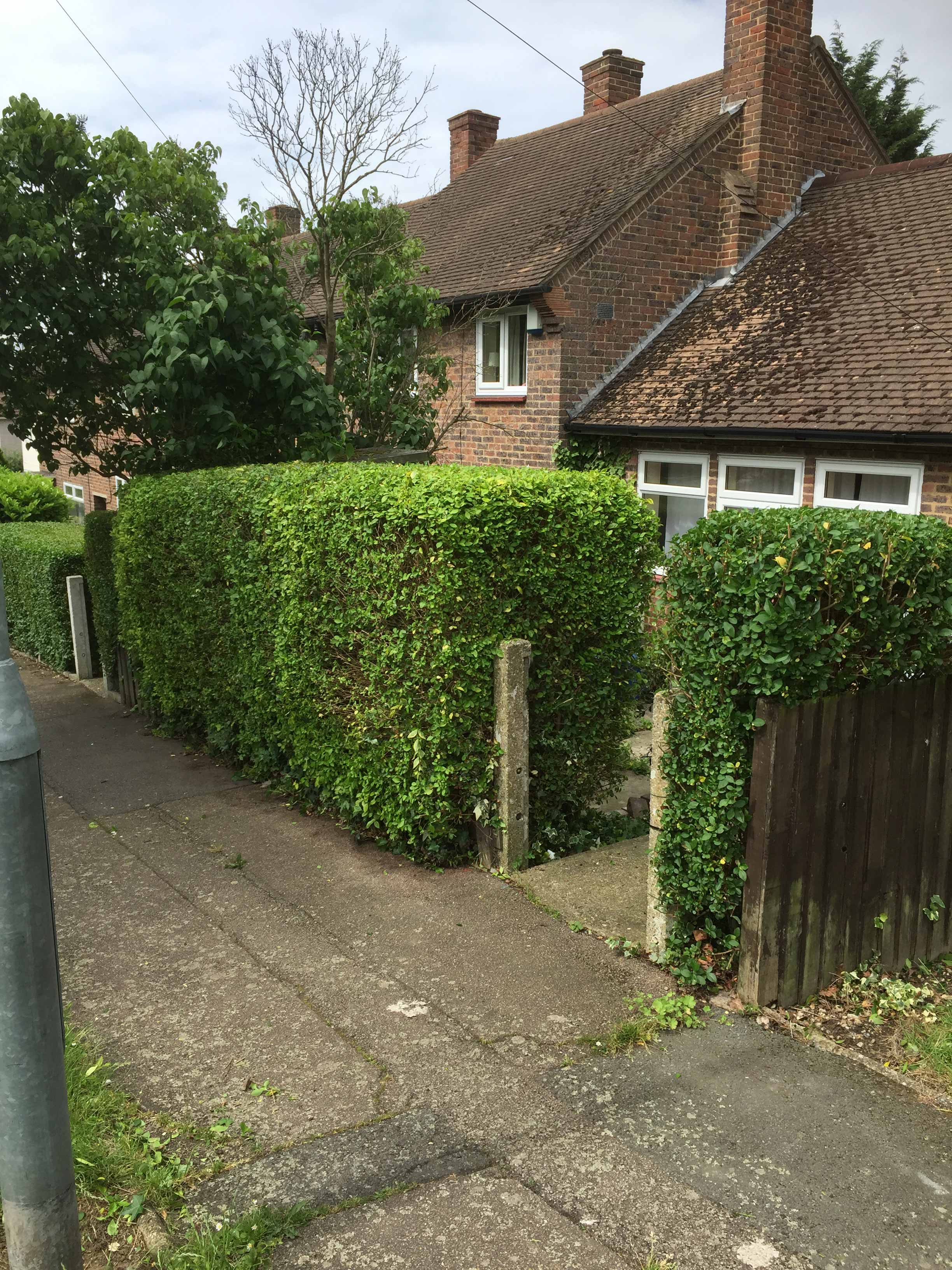 Hedge Loughton